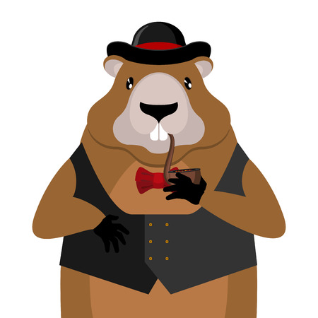 Marmot in hat and with pipe for national holiday illustration.