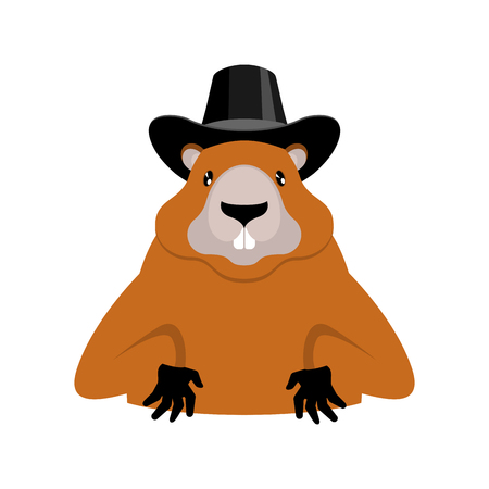 Marmot wearing black hat for Groundhog Day holiday illustration.