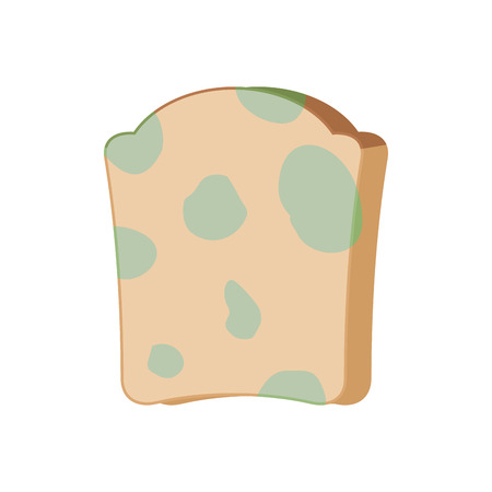 Piece of bread with mold isolated on white background. Vectores