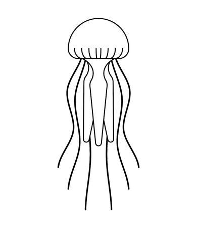 Jellyfish isolated. Marine animal. wildlife Vector illustration