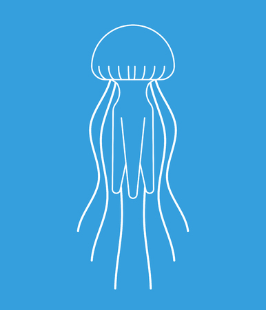 Jellyfish isolated. Marine animal. wildlife Vector illustration