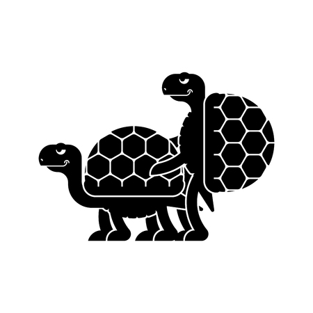 Turtle sex. Tortoise intercourse. Reptile isolated. Animal reproduction