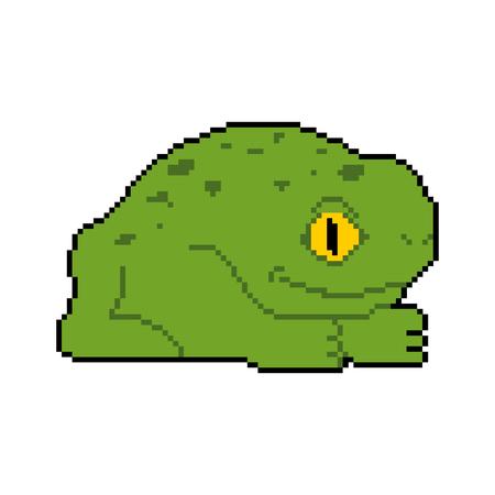 Frog pixel art. Toad 8 bit. Vector illustration.