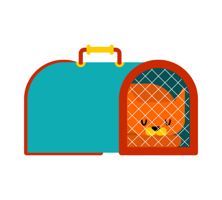 Cat transport box and pet. Carrying case Vector illustration
