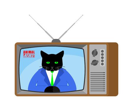 Animal news old tv. Pet Live broadcasting. Cat broadcasting journalist. Beast Anchorman in tv studio. Illustration
