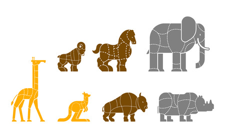 Cut of meat set beast Giraffe and Kangaroo. Bison and rhinoceros. silhouette scheme lines of different parts meat. How to cut flesh Elephant, horse and ram. Poster Butchers diagram for meat stores. Barbecue and steaks, delicacy dishes.