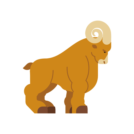 Ram isolated. Horned sheep. Farm animal vector illustration 矢量图像