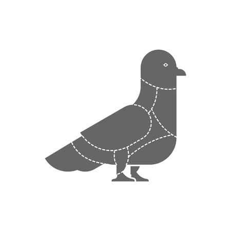Coupe de viande Colombe. Lignes de schéma de silhouette de pigeon de différentes parties de viande. Comment couper la chair des oiseaux de rue. Diagramme de bouchers d'affiche pour les magasins de viande. Barbecue et steaks, mets délicats.