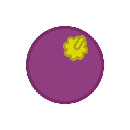 Mangosteen isolated. Fruit Cartoon style vector illustration