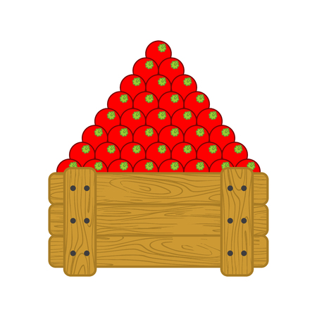 Tomatoes in wooden box isolated. Tomato for sale on market. vegetable cartoon style vector