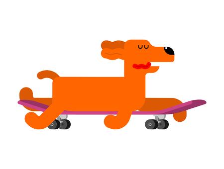 Dog on skateboard. pet on board. hound Skateboarder Ilustração