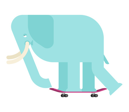 Elephant on skateboard. Large Animal on board. bishop Skateboarder Zdjęcie Seryjne - 122899849