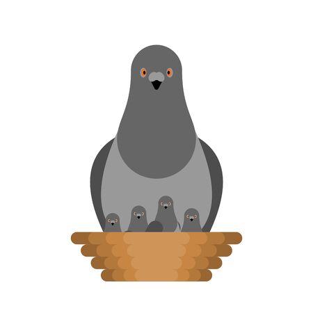 Colombe et poussins au nid. Oiseau de la cité des pigeons. illustration vectorielle