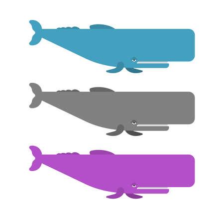 Sperm whale set. cachalot big whale vector illustration 向量圖像