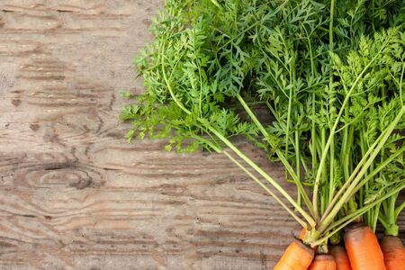 Fresh orange sweet carrot with green leaves in a pile lies on a wooden surface. Background