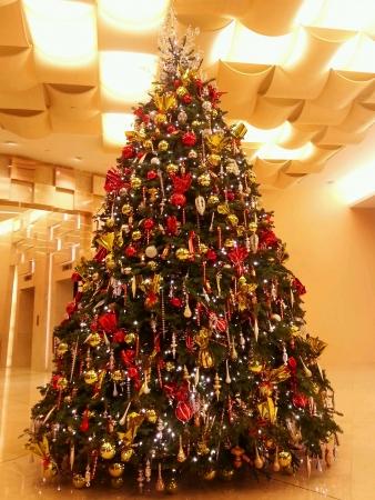 huge christmas tree: Beautiful Christmas tree