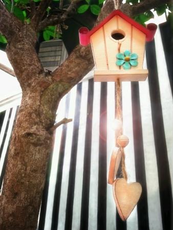 maison oiseau: Maison de l'Oiseau ornement