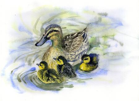 Pintura em aquarela de patos e patinhos em uma lagoa