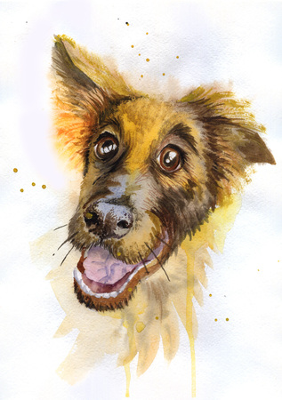 Watercolor painting funny dog ??breed shepherd Stock Photo