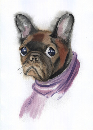 Watercolor painting of the sadness little dog in a purple scarf