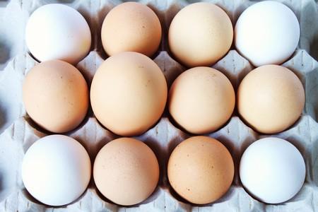 supremacy: The big egg