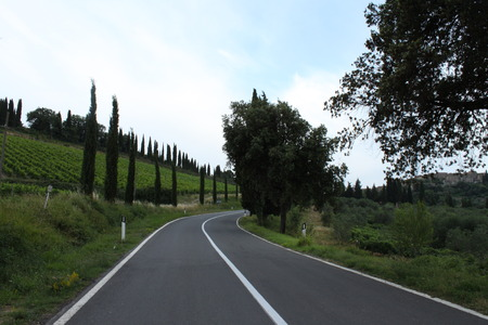 antimo: The road from Sant Antimo Abbey to Montalcino Stock Photo