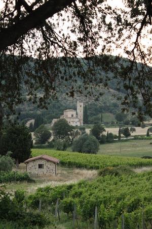 antimo: Sant Antimo Abbey near Montalcino