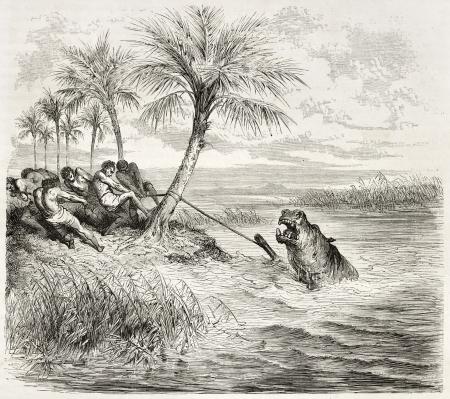 Capture d'une illustration Hyppopotamus ancienne. Créé par Dore après Anderson, publié sur Le Tour du Monde, Paris, 1860