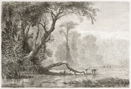 caucasian ancestry: Old view of Rioni river, Georgia. Created by Moynet, published on Le Tour du Monde, Paris, 1860  Editorial
