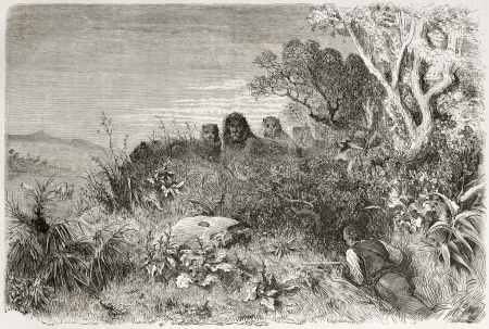africa antique: Old illustration of unexpected hunting companions. Created by Dore after Anderson, published on Le Tour du Monde, Paris, 1860