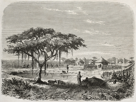african ancestry: Central African village old illustration, Created by Rouargue after Barth, published on Le Tour du Monde, Paris, 1860