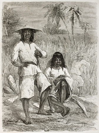 exploited: Chinese coolies (Asian slaves) in Cuba. Created by Pelcoq after photo of unknown author, published on Le Tour du Monde, Paris, 1860.