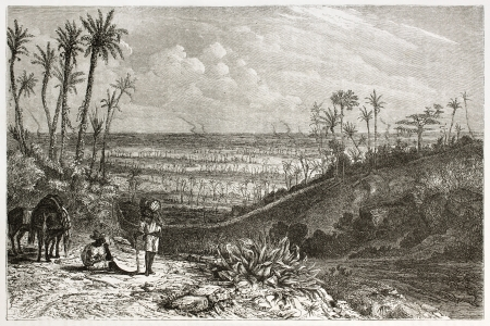 Cuba landscape, old illustration. Created by Huet after Miahle, published on Le Tour du Monde, Paris, 1860