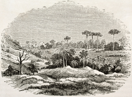 african ancestry: Thermal source site in Zanzibar, old illustration. Created by Burton, published on Le Tour du Monde, Paris, 1860