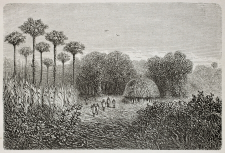 ethnology: Old illustration of Polohuatini tribal site, Peru. Created by Riou, published on Le Tour du Monde, Paris, 1864 Editorial