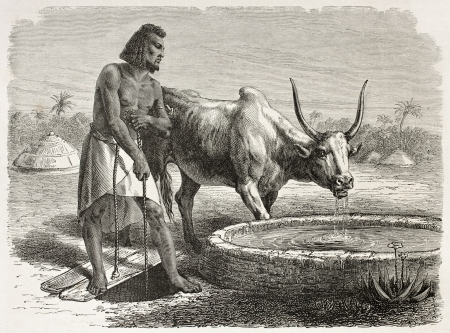 Abyssinian drinking trough old illustration. Created by Bayard after Lejean, published on Le Tour du Monde, Paris, 1867