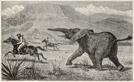 Wounded elephant pursuing British explorer Samuel Baker. Created by Neuville, published on Le Tour du Monde, Paris, 1867