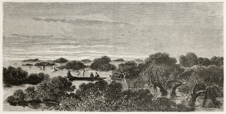 published: Igap� old view, Brazil (flooded forest). Created by Riou, published on Le Tour du Monde, Paris, 1867 Editorial