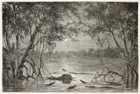 Moonlight on Juteca Lake, Brazil. Created by Riou, published on Le Tour du Monde, Paris, 1867 Editorial