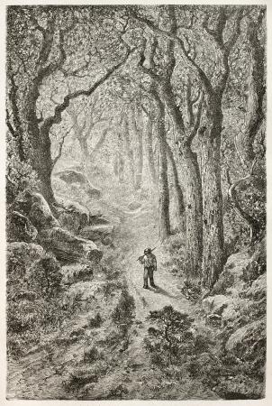 aux: Gorge-aux-Loups old view, Fointainebleau forest, France. Created by Grenet, published on Le Tour du Monde, Paris, 1867 Editorial