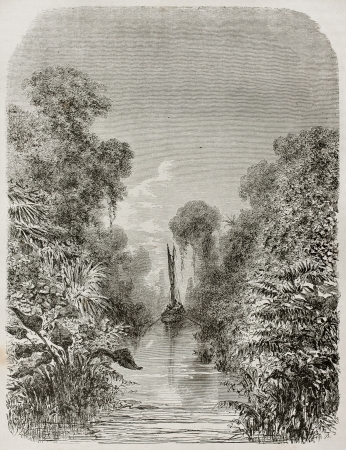 amazonas: Igarape-Miri channel vegetation old view, Brazil. Created by Riou, published on Le Tour du Monde, Paris, 1867