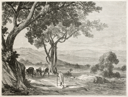 islamic scenery: Kabylie, Algeria: the route to Fort Napoleon. Created by Dohusset, published on Le Tour Du Monde, Paris, 1867