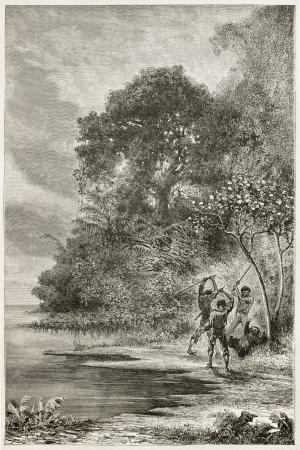 Los hombres matando perezoso de tres dedos a lo largo del r�o Amazonas banco. Creado por Riou y Sargent, publicado en Le Tour du Monde, Par�s, 1867 Foto de archivo - 15181298