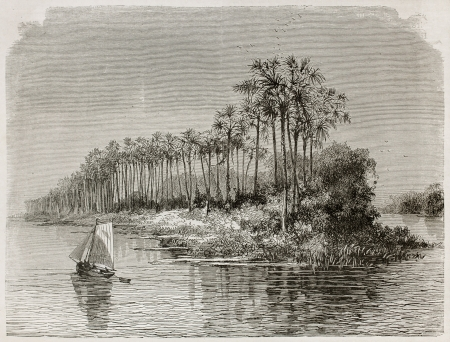 rio amazonas: Mantequeira isla viejo vista del río Amazonas, en Brasil. Creado por Riou, publicado en Le Tour du Monde, París, 1867 Editorial