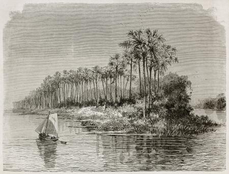 río amazonas: Mantequeira isla viejo vista del río Amazonas, en Brasil. Creado por Riou, publicado en Le Tour du Monde, París, 1867 Editorial