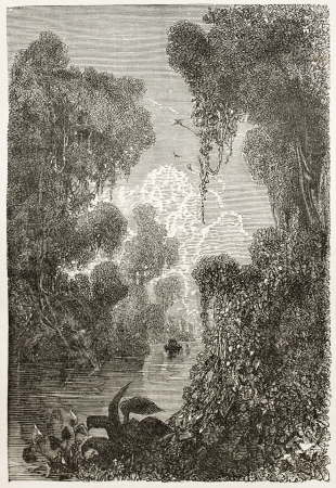 amazon river: Moju channel old view, Brazil. Created by Riou, published on Le Tour du Monde, Paris, 1867