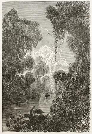 amazon rainforest: Moju channel old view, Brazil. Created by Riou, published on Le Tour du Monde, Paris, 1867