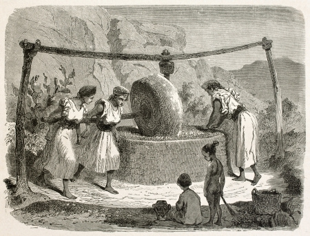 olive farm: Oil mill in Kabylia old illustration, Algeria. Created by Stop after Duhousset, published on Le Tour Du Monde, Paris, 1867