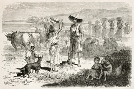 northern african: Woman threshing wheat in Kabylia, Algeria. Created by Stop after Duhousset, published on Le Tour Du Monde, Paris, 1867 Editorial