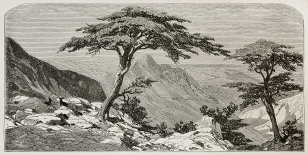 Tirourda hill old view, Kabylia, Algeria. Created by Duhousset, published on Le Tour Du Monde, Paris, 1867 Stock Photo - 15181205